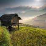 SAPA – LA PAN TAN – MU CANG CHAI – TU LE ( 5 DAYS – 4 NIGHTS )